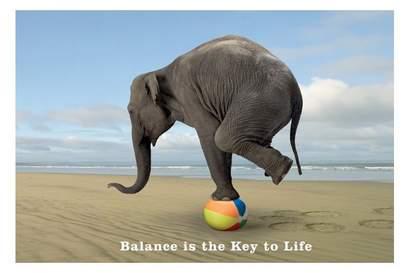 balans-elefant